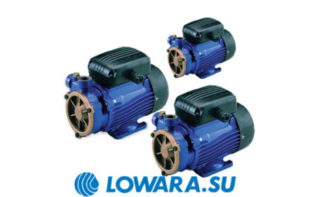 Серия одноступенчатых насосов Lowara P, PAB, PSA известного итальянского производителя представляет собой инновационное решение в области водоснабжения и водообеспечения. Ведущее […]